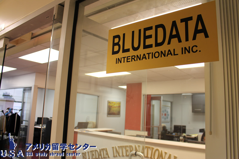 Bluedata International